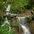 Autumn Rain at Olinda Falls by Jason Green