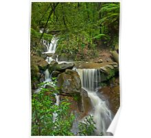 Autumn Rain at Olinda Falls Poster