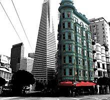 San Francisco Pops by Tamara Brown