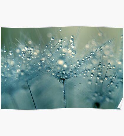 Shower Blue Poster