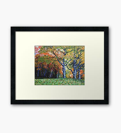 'Autumn Trees Along Bass Lake'  Framed Print