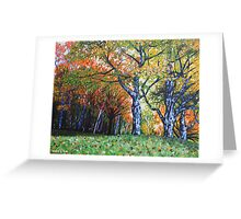 'Autumn Trees Along Bass Lake'  Greeting Card