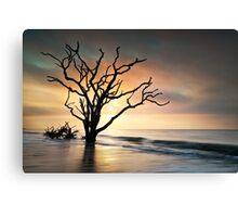Boneyard Sunrise - Botany Bay, Edisto Island SC Canvas Print