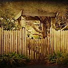 Don&#x27;t Fence me In by Elaine Teague