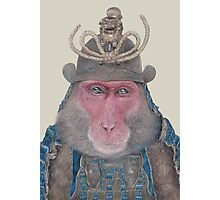Japanese Macaque Photographic Print