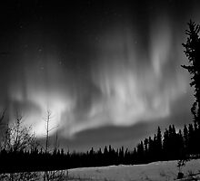 The Auroras in Black& White by peaceofthenorth