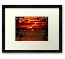 Framed by the Trees Framed Print