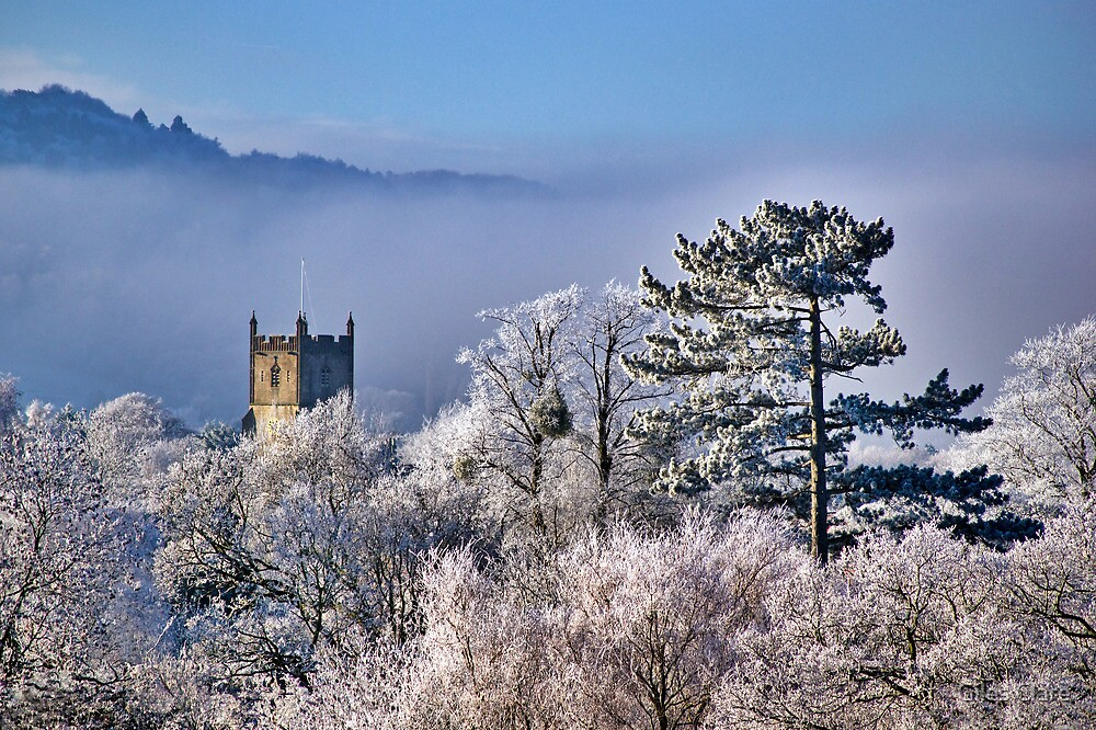 Hoar Frost, Cheltenham, England by Giles Clare
