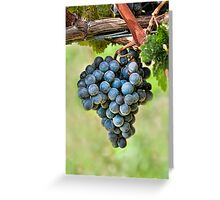 Peel Me A Grape Greeting Card
