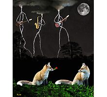 ROCKING FOXS Photographic Print