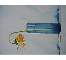 The lone Sunflower Photographic Print