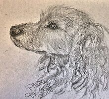 A Dog Named Peanuts by Eve Parry