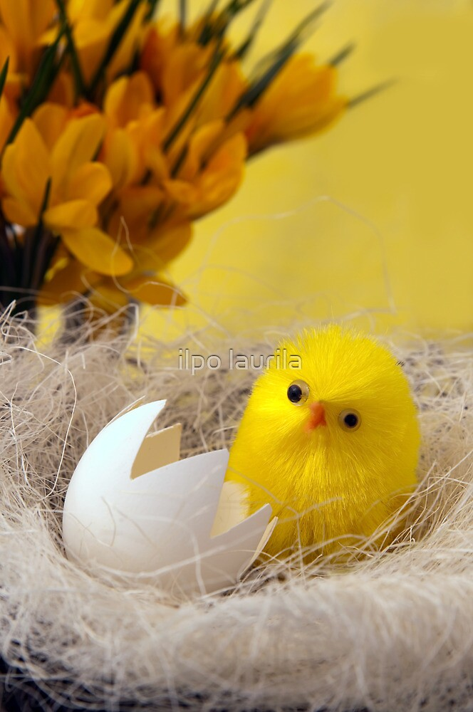 Happy Easter by ilpo laurila