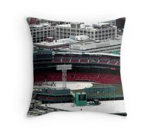 Fenway Throw Pillow