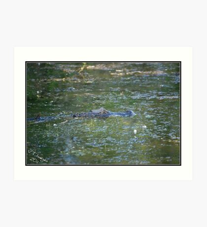 Lurking Gator Art Print