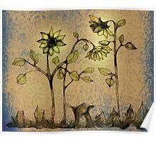 Scribbler-Sunflower Poster