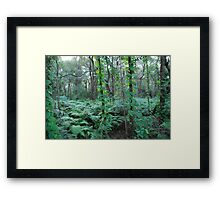 Who Dressed the Forest so Beautifully Framed Print