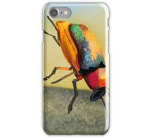 Acrobat Beetle iPhone Case/Skin