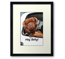 Greeting Card Dog Leaning Out of Car Framed Print