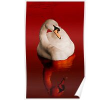 Blood Swan Poster
