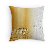 Finding Ohm Throw Pillow