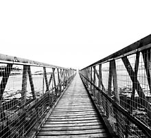 Bridge over still waters by Lisa Fitchett