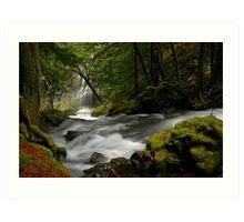 Panther Creek Falls Landscape Art Print