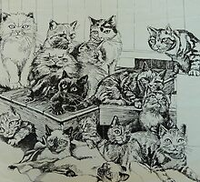 Cats by Sally Sargent