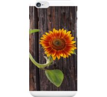 Summer Sunflower iPhone Case/Skin