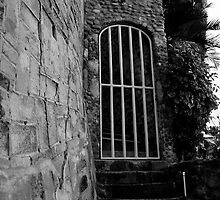 Hidden Gate. Black and White by richard  webb