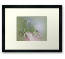 Herbal Remedy Framed Print