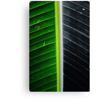 Leafy Abstract Canvas Print