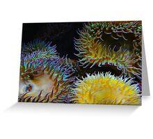 Underwater Garden Greeting Card