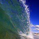 Mullet Shore by John Brumfield