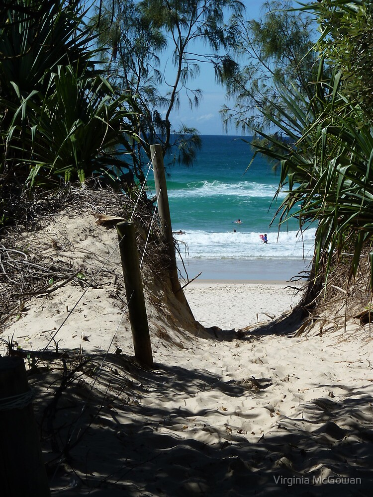Pathway to Dreamtime Beach, at Fingal NSW by Virginia McGowan