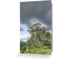 vista at Rosevears Vineyard   Greeting Card