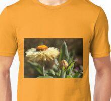 Paper daisies Unisex T-Shirt