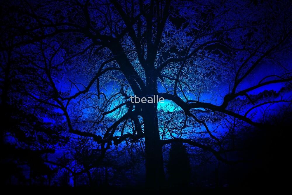 ~blue moon~ by Terri~Lynn Bealle