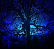 ~blue moon~ by Terri~Lynn Bealle