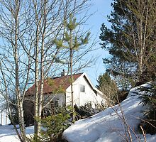Norwegian Houses Series #1 by missmoneypenny