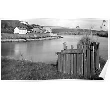 Summercove Cottage Poster