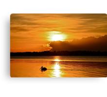 Golden Morning.  15-4-11. Canvas Print