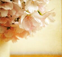 Be My Cherry Blossom by Lyn  Randle
