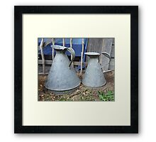 Two Jugs to Catch Bugs Framed Print