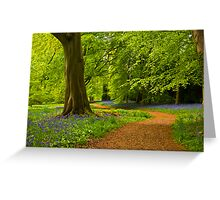 Woodland Path Greeting Card