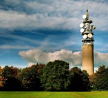 Heaton Park Tower by Michelle McMahon