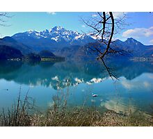 Blue Lake and Swan Photographic Print