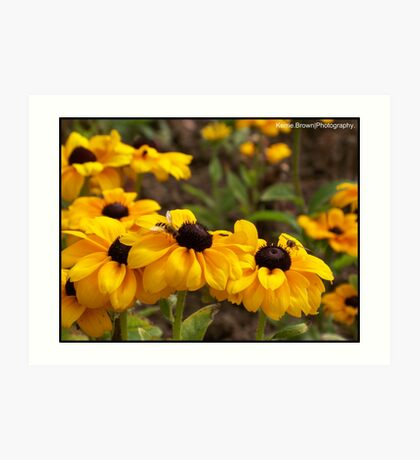 Bright Flowers attracting the wasps Art Print