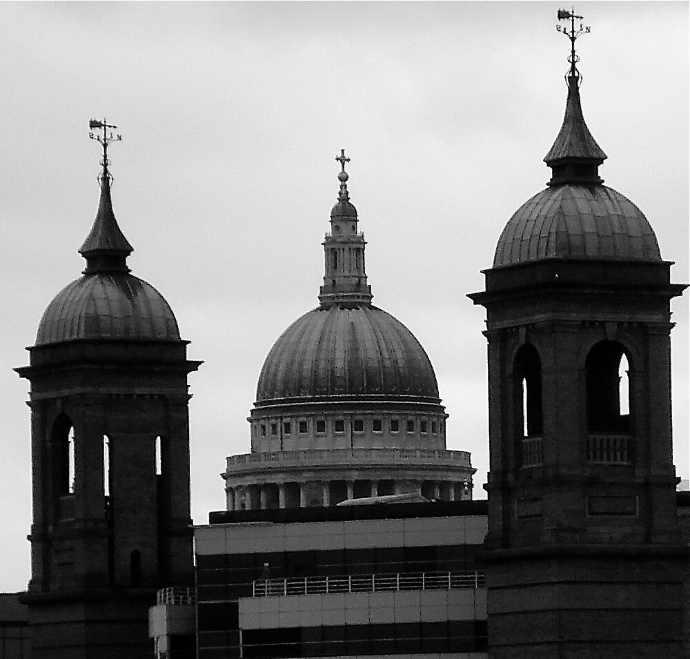 St. Pauls Cathedral.London by richard  webb