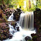 Birr Castle Waterfall by Alfredo Encallado